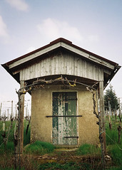 Widmung ... (alf sigaro) Tags: vineyard nikon htte vineyards weinberg htten badenwrttemberg weinberge nikonl35af weinbergsymmetrie
