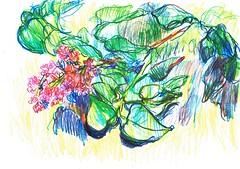 LILAS (GARGABLE) Tags: flores fleurs hojas verdes linea lilas apuntes azules lpicesdecolores uskspain gargable angelbeltrn