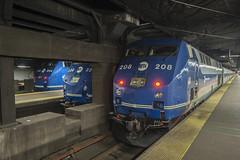 Sleeping Gennies (Nick Gagliardi) Tags: new york railroad train diesel metro north central grand trains terminal dual mode metronorth mncr p32acdm