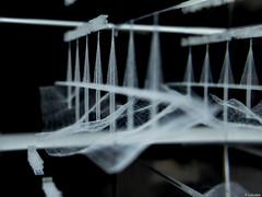 Dentro del prisma (Luicabe) Tags: blancoynegro puente arquitectura luis cristal zamora vidrio cabello millau estructura profundidaddecampo viaducto monocromtico ingeniera fondonegro macrofotografia yarat1 enazamorado luicabe
