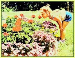 In Summertime: Smelling the Flowers (cayugahull08) Tags: flowers garden child kansas topeka steveclark