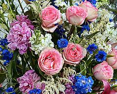 Happy New Year! (Walkuere123) Tags: roses festive newyear rosen rosas neujahr peonies aonuevo pinkroses cornflowers festivo blumenstraus festlich sonyslta58