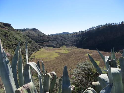 La Caldera de Los Marteles, Gran Canaria, December 2015