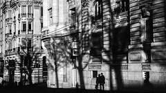 Street - St-François (Phonatics) Tags: street city trees light urban panorama sun white black film analog buildings walking switzerland town nikon downtown shadows candid victorian lausanne infrared z nikkor f5 development bnw argentique