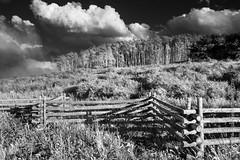 Fences and Aspens (burnhamgraphicarts) Tags: clouds landscape colorado jeep aspens telluride portfolio sell lastdollarrd flickrtelluride