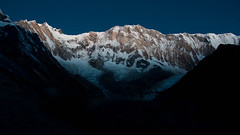Barely Sunlit (Pooja Pant) Tags: nepal mountains beautiful trek abc annapurna annapurnabasecamp macchapuchre