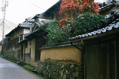 Takenouchi Kaido Rd. (miho's dad) Tags: contaxrx fujicolor100 carlzeisstessart2845