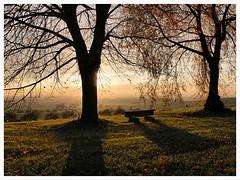 Eichberg (czorneboh) Tags: trees shadow germany landscape deutschland shadows saxony sachsen landschaft bume schatten lichtenberg gegenlicht eichberg lausitz bautzen pulsnitz westlausitz