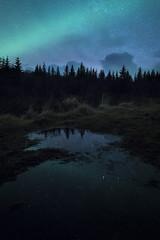 s t r e a k | svolvær, norway (elmofoto) Tags: norway norge nordland nordnorge scandinavia nightphotography photographersontumblr photographersoninstagram nikon d810 nikond810 longexposure europe winter trees reflection puddle 1424mm lofoten svolvær archipelago island nordlys northernlights auroraborealis stars starrynight vagankommune highiso fav100 fav200 fav300 fav400 fav500 fav600 fav700 50000v