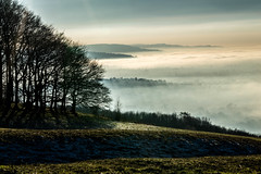 Cold Foggy Hill - Cleeve Hill, Gloucestershire. (Jeremiah Huxley Productions) Tags: hill gloucestershire cheltenham cleeve cleevehill