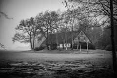 verlassenes Bauernhaus (matthias-fotografien) Tags: monochrome bauernhof niedersachsen reetdachhaus vierhausen