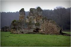 Waverley Abbey Ruins (si_smith) Tags: abbey ruins guildford farnham waverley