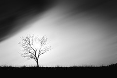 Storm and light - 38/366 (Gruenewiese86) Tags: white black nature monochrome canon germany landscape outdoor natur himmel minimal 365 minimalism landschaft weiss schwarz 6d 366 einfarbig minimalismus 3652016