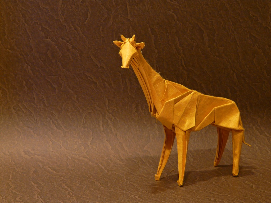 The World's Best Photos of giraffe and origami - Flickr ... - photo#29