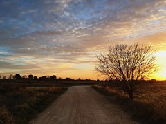 My beatiful home (Marcosnr92) Tags: sky clouds landscape photography gold spain europe photographer cloudy horizon beatiful iphone vsco vscocam iphone6s shotoniphone6s