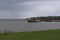 Balbriggan lighthouse (@ELHynes) Tags: ireland sea dublin lighthouse water rain island islands seaside harbour irishsea balbriggan