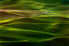 Washington Palouse (EdBob) Tags: steptoe steptoebutte easternwashington palouse farm farmland farming agriculture agricultural green landscape silos rural hills rolling yellow colson washington washingtonstate washingtonstatetourism spring springtime road outdoors nature morning dawn edmundlowephotography edmundlowe allmyphotographsare©copyrightedandallrightsreservednoneofthesephotosmaybereproducedandorusedinanyformofpublicationprintortheinternetwithoutmywrittenpermission wwwedmundlowephotocom