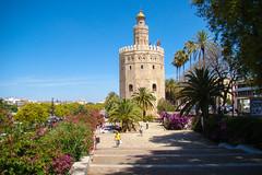 Torre do Ouro (3Ms (Marco Sousa)) Tags: do torre ouro sevilha