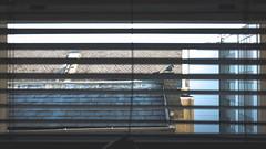 The flying voyeur (BenChapmanphoto) Tags: life city uk morning urban bird silhouette out hotel interesting looking blind pigeon wildlife norfolk streetphotography voyeur spy norwich fujifilm february lookingout 2016 tclx100 x100t fujifilmx100t