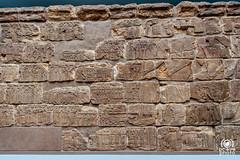Bas-relief (andrea.prave) Tags: uk england london museum museu muse londres museo britishmuseum londra basrelief inghilterra  mze    bassorilievo bajorrelieve