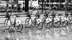 City Bikes (cathbooton) Tags: city travel blackandwhite reflection rain weather bike bicycle liverpool cycling transport cycle merseyside wetpavement