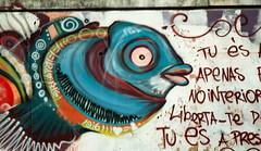 Fish (rgrant_97) Tags: film portugal vintage graffiti fuji retro coimbra voigtlnder gaiola vitob