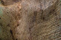 Burlap (ramseybuckeye) Tags: park columbus ohio art franklin pentax conservatory burlap