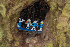 smurfs in a tree (nownowfatcat) Tags: game gladness amusement high young device mirth spirits entertainment laughter youthful gadget smurfs enjoyment pleasure glee trinket knickknack gaiety girlish hilarity plaything levity childlike  younglooking jocularity joviality lightheartedness cheeriness jollity