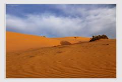 Transient Prejudices (giovannispina31) Tags: voyage travel sunset red sky orange sun hot nature clouds landscape sand dubai tramonto nuvole desert offroad wind atmosphere safari cielo deserto