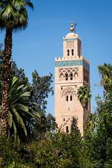 Mosque de la Koutoubia  Marrakech (Michel Dancoisne) Tags: photographie maroc marrakech michel personnes lieux koutoubia mosque dancoisne
