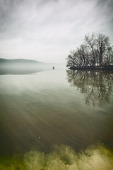 The Slicks (Rob Mintzes) Tags: trees nature toxic water strange yellow fog clouds river landscape coast weird neon cloudy foggy spooky odd shore pollution brooding hudson pollen murky toxicity