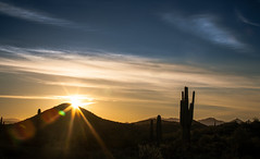 Sonoran Sunstar Sunrise (Paul T. Marsh/PositivePaul) Tags: vacation arizona cactus mountains phoenix clouds sunrise spring canon5d saguaro sunstar 2016 llens canon70200mmf4l canonllens wwwpaulmphotographycom paulmarshphotography lightroom5 paultmarsh