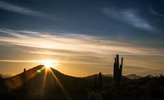Sonoran Sunstar Sunrise (Paul T. Marsh/PositivePaul) Tags: vacation arizona cactus mountains phoenix clouds sunrise spring canon5d saguaro sunstar 2016 llens canon70200mmf4l canonllens wwwpaulmphotographycom paulmarshphotography lightroom5 paultmarsh