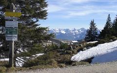 Which Way? (bookhouse boy) Tags: mountains alps berge alpen samerberg 2016 chiemgau grainbach hochries chiemgaueralpen 21april2016