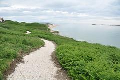 Causeway New Coastal Path (Lisa_Jardine) Tags: county northernireland portrush countyantrim antrim causewaycoast eaststrand eaststrandportrush northcoastofireland