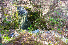DSC_2794 (Bob Carlson) Tags: park state falling waters