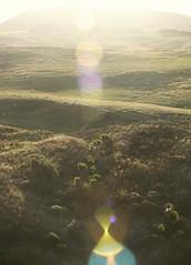 (felix.h) Tags: newzealand summer nature backlight canon landscape eos hills lensflare otago dunedin otagopeninsula backlighting 400d canoneos400d digitalrebelxti tokina5013528 eosdigitalkiss tokina50135mm28