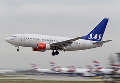 SAS 737-600 LN-RCU