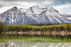 Fall in the Canadian Rockies (PIERRE LECLERC PHOTO) Tags: travel autumn canada mountains fall nature canon landscape rockies outdoors roadtrip canadian adventure explore glaciers rockymountains wilderness natgeo pierreleclercphotography 5dsr