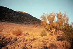 (patrickjoust) Tags: california county ca usa color 120 film analog rural america lens mono us high focus desert mechanical united country north patrick rangefinder negative lee 6x9 medium format states manual northern sierranevada joust 90mm fujinon estados f35 vining c41 unidos monocounty kodakportra160 autaut patrickjoust fujicagw690