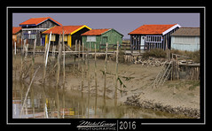 The cabins of La Tremblade 2 (mg photographe) Tags: sea mer france cabin atlantic oysters fishermans oceans charente pcheurs latremblade cabanes ostreculteurs