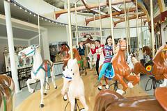 WRHS-5988 (FarFlungTravels) Tags: ohio horse history beach museum kids fun play ride cleveland carousel activity euclid merrygoround universitycircle euclidbeach