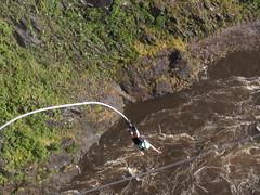 Mirjam Bungy Jumping (little_duckie) Tags: africa zimbabwe bungy bungee zambezi bungyjump zambeziriver 111metres