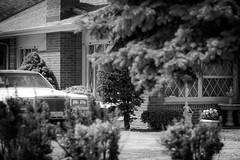 (116/366) Suburbia (CarusoPhoto) Tags: trees bw house home fountain car statue project john 50mm prime photo day pentax suburbia 365 everyday f18 caruso smc mundane banal ordinary ks2 366 pentaxda carusophoto smcpentaxda50mmf18