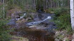 Brook from Ruuhijrvi (Nuuksio national park, Espoo, 20160424) (RainoL) Tags: forest espoo finland geotagged nationalpark spring april brook fin nuuksio 2016 uusimaa nyland noux nuuksionationalpark nouxnationalpark nuuksionp fz200 201604 20160424 nouxnda geo:lat=6031460723 geo:lon=2454702973