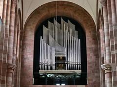 Orgel Kaiserdom Speyer (Arnolt S.) Tags: music church architecture lumix panasonic organ musicalinstrument orgel pipeorgan speyer mft musikinstrument gottfriedbhm speyererdom kaiserdomspeyer microfourthirds lumixgf7 orgelbauseifert panasoniclumixg42517 orgelbauseifertkevelaer