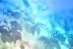 blur-dreamy-texture-texturepalace-74 (texturepalace) Tags: blur color leaves cc creativecommons dreamtextures texturepalace blurtextures