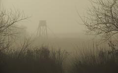 Nebelimpressionen (Wunderlich, Olga) Tags: nebel jgersitz nebelstimmung