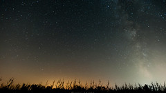 Star field (dansshots) Tags: nightphotography silhouette stars nightshot upstateny upstatenewyork starrynight starfield starsinthesky nikond3 dansshots starfieldphotography