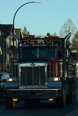 (Ian Threlkeld) Tags: drive nikon driving bc britishcolumbia dumptruck explore trucks westcoast pnw mapleridge irt peterbilt nikonphotos pittmeadows beautifulbc nikonphotography nikonphoto drivebc d7000 bctrucking truckingbc